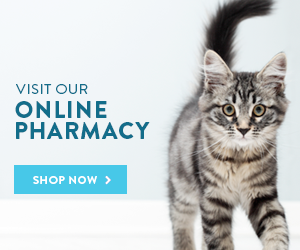 MountainView Veterinary Hospital offers an online pharmacy